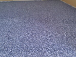 blue chip garage 6